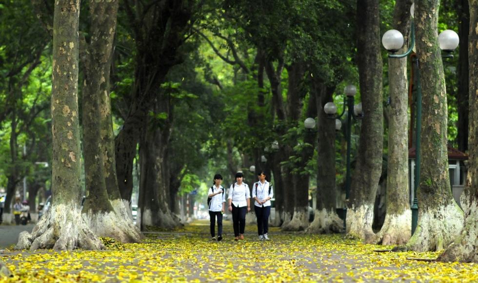 con đường tình Yêu - Phan Đình Phùng